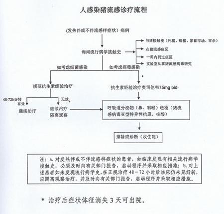 如何诊断甲型h1n1流感?(附诊疗流程) -- 中国发