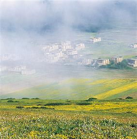 晨雾中的民居