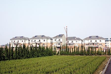 河庄:借江东新城建设推动城市化进程