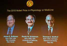 美德三名科学家分享2013年诺贝尔生理学或医学奖