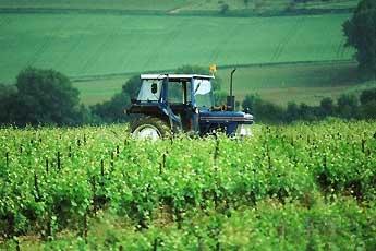 中国农业现代化发展趋势