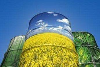世界主要国家生物液体燃料产业政策报告