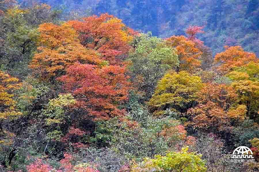 大美鞍子河:秋天里的别样风景[图]_中国发展门户网