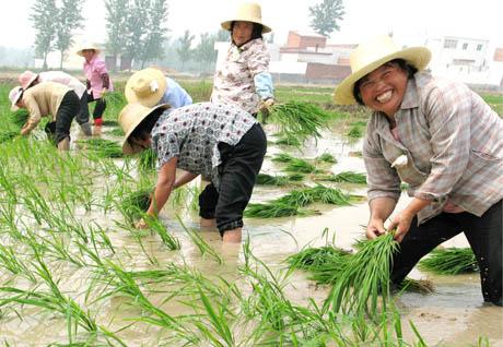 妇女在气候危机中更为脆弱,中国应积极借鉴国际经验,关注贫困和弱势农村妇女的权利诉求,从而提高这个人群适应气候变化和参与可持续发展的能力。