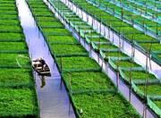 新一轮农村土地改革的重点和方向