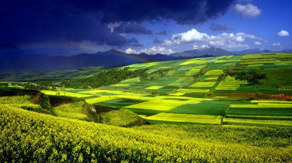 牛文元:中国经济新常态必须走可持续发展之路