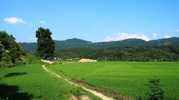 """习近平生态观:蓝天不能靠东风,关键在""""两座山"""""""