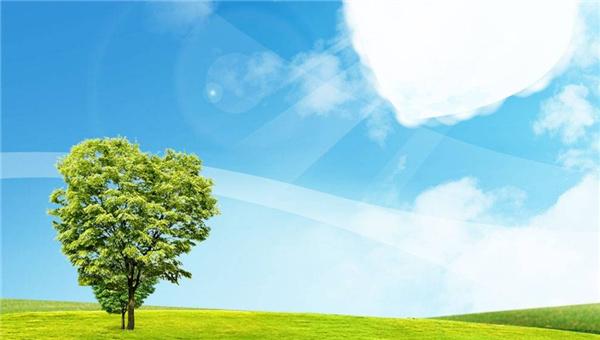 李玉洁:我国公众对生态低碳关注度不够