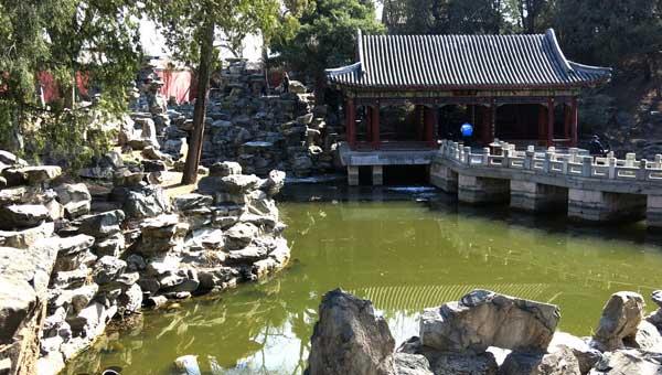 京城避暑胜地藏在公园:身处闹市 气温仅25℃左右