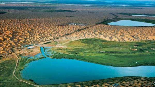 张世钢:库布其沙漠试点项目对环境产生积极影响