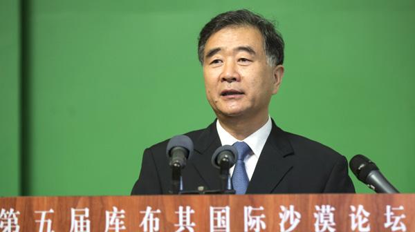 汪洋:中国走出特色荒漠化防治道路