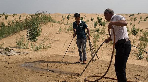 张世钢:荒漠化挤压生存空间 中国治沙经验可推广