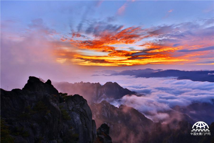 安徽黄山风景区万木争辉,各种颜色错杂交融,与红日,白雾,黛石,青松