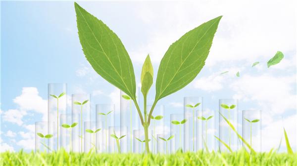 杨多贵:世界可共享中国绿色发展福利
