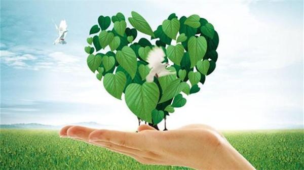 杨多贵:'十三五'规划建议提出绿色发展有四大制度创新