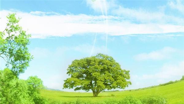 """'十三五'贯彻绿色发展理念 迈向""""三个零""""目标"""