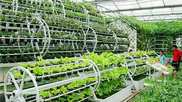 供给侧结构性改革要求我国农业发展必须加快转型升级