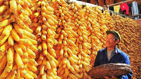 中央农村工作会议 为亿万农民带来5大福利
