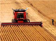 发展访谈:如何推进中国农业供给侧结构性改革