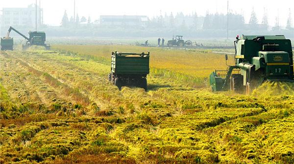 人大代表隋熙明:现代农业发展的脚步加快了