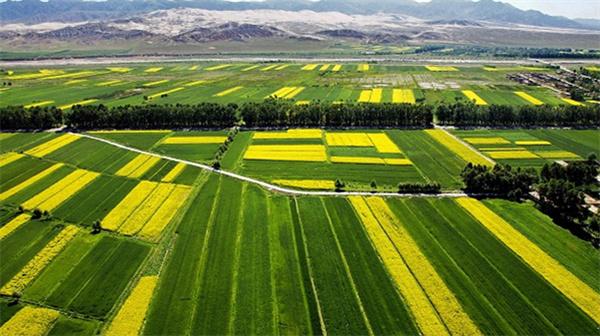 人大代表隋熙明:实现农业现代化需注重三方面