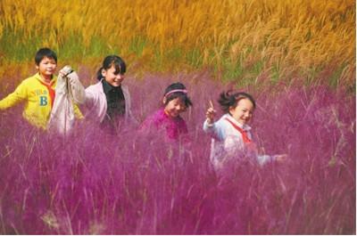 河南脱贫军令状:2016年100万农村贫困人口脱贫