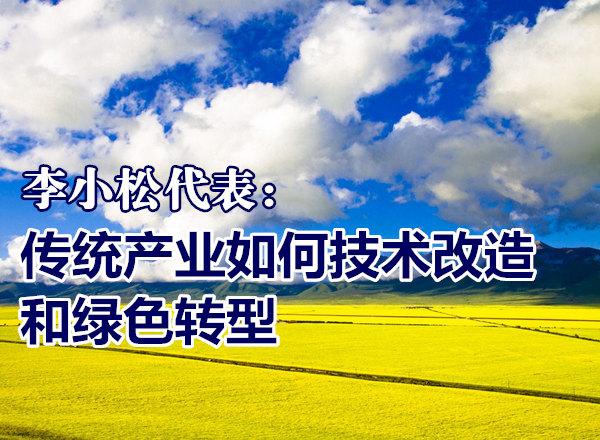 李小松代表:传统产业如何技术改造和绿色转型