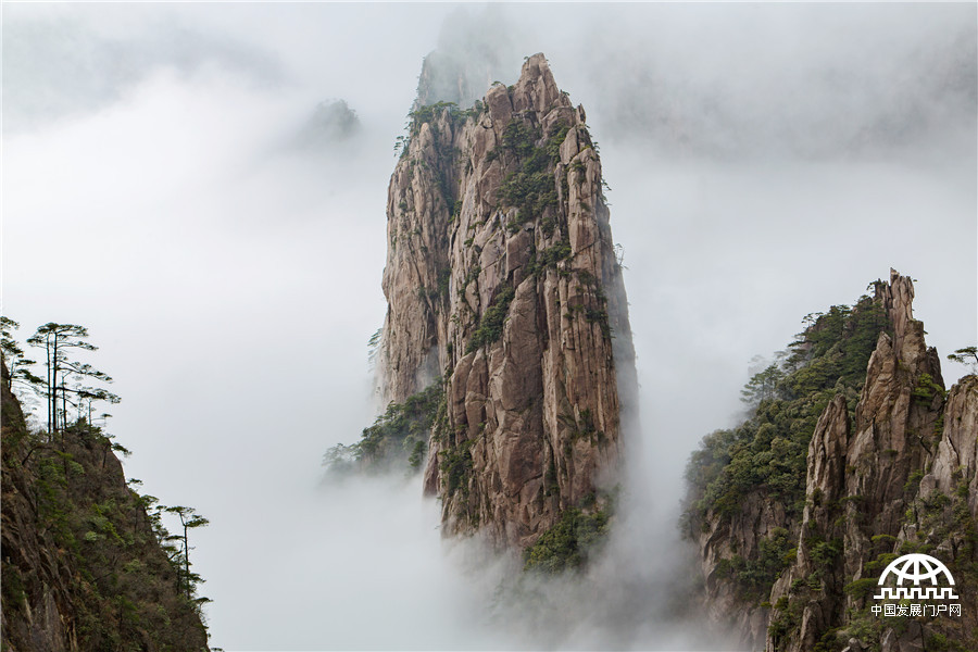 """今年的""""清明""""小长假,黄山风景区阴雨连连,数万名中外游客冒雨登上黄山"""