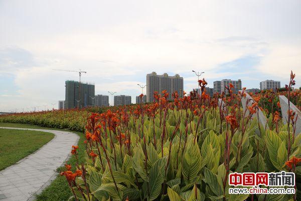 绿岛湖湿地公园.中国网李云鹏摄