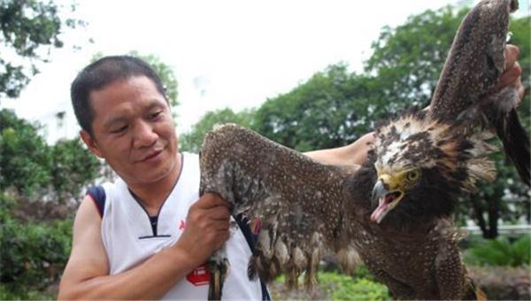 湖南道县查获大批野生动物 放归大自然