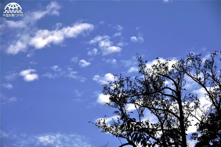 翠壑丹崖千丈画,白云红叶一溪诗。这是古人对黄山秋天最好的描写。秋天到黄山去赏秋,秋高气爽,黄山的秋天,天空格外纯净,蓝天上的白云悠悠,越过一座座山峰,寻找它的最好归宿。蓝天白云,天地相连。一场秋雨一场寒,近几日的秋雨,让黄山的秋色更浓,秋果挂满枝头,各种树叶在一天天变黄、变红,或红或黄或橙的树叶,点缀在千峰万壑,绽放在黄山之巅。