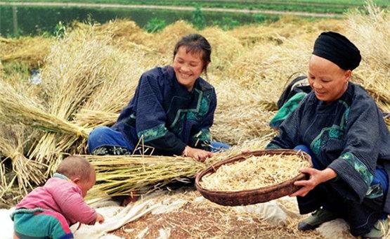 """湖南吉首:坚持把精准脱贫作为""""第一民生工程"""""""