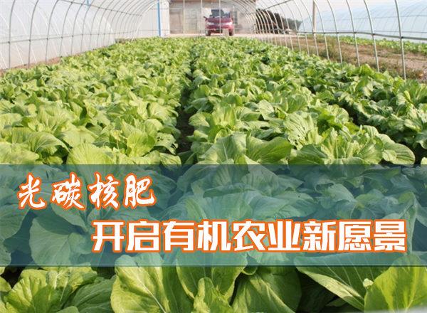 光碳核肥开启有机农业新愿景