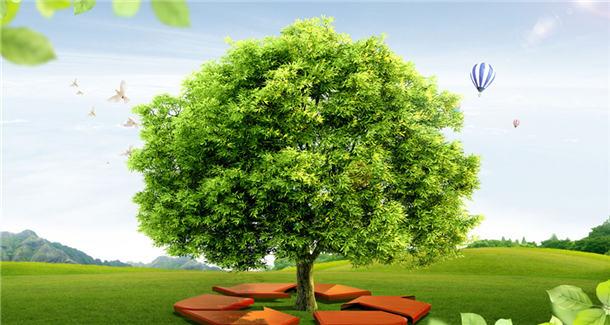 解读政府工作报告:'四轮驱动'生态环境治理迈上新台阶