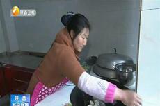 陕西:依托乡村旅游 助农脱贫增收