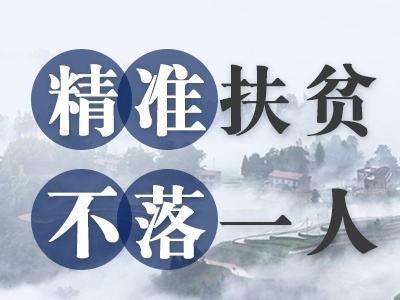 精準扶貧:中國扶貧戰略的重大轉變