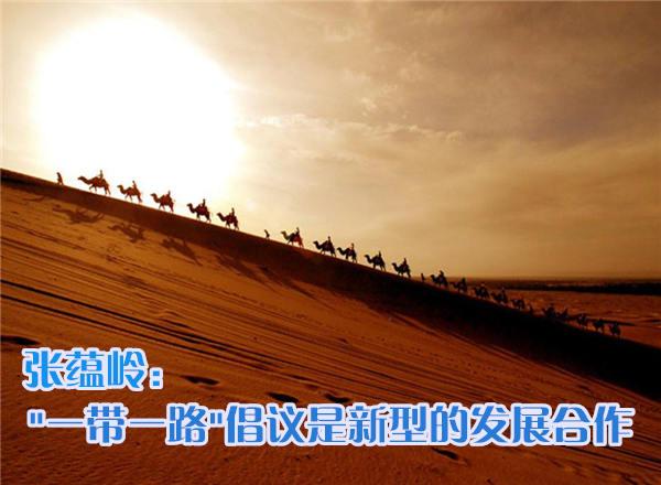 张蕴岭委员:'一带一路'倡议是新型的发展合作