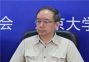 王小鲁:如何界定中等收入群体