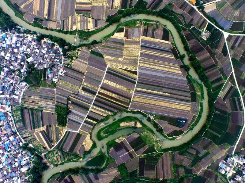 这是我国南菜北运基地——广西百色市田阳县的万亩西红柿、西葫芦、四季豆等万亩蔬菜种植基地(3月13日摄)。新华社记者 黄孝邦 摄