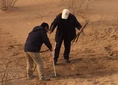 镜头中的脱贫故事 走进库布其:一枪一钻 数千万亩沙漠变绿洲