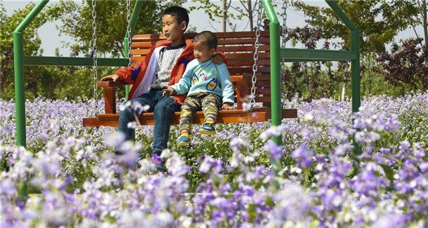 河北景县:积极发展农业生态旅游