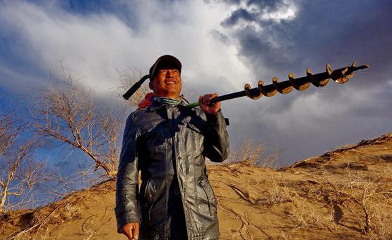 """镜头中的脱贫故事:创造""""绿色奇迹""""的沙漠劳动者们"""