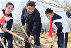 习近平:把造林绿化事业一代接着一代干下去