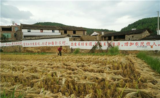 【镜头中的脱贫故事】小嘎勒高寨村美丽乡村