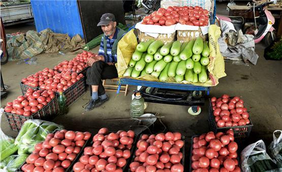 【镜头中的脱贫故事】陕西汉中:蔬菜产销 脱贫致富