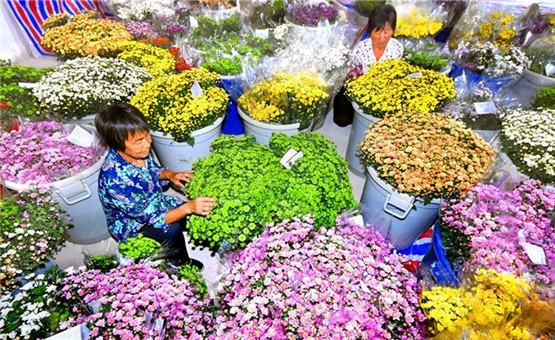 """山东沂源:""""特色+""""助推新型农业发展"""