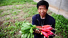 Yang Juntian poses with a bunch of radishes inside his greenhouse in Jiegu town of Yushu, April 11, 2011.
