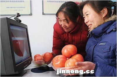 Internet use in China's rural areas lags behind that in cities. While three-fifth of urban Chinese use the Internet, less than a quarter of the rural population do so, and the gap is growing.