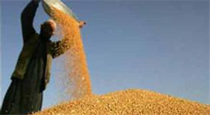 China will step up efforts to purchase and store grain and build more granaries as its grain output rises, according to an official statement on Wednesday.