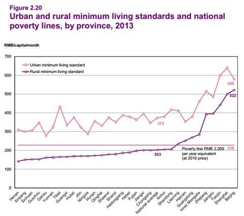 article 2_urban and rural minimum living standards and national poverty lines.jpg